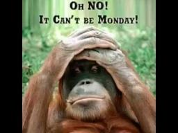 Oh no monday